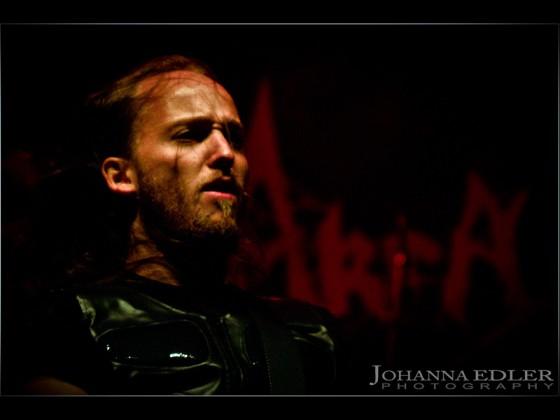 Zwiebel Assault 2012